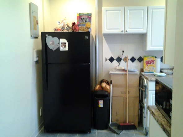 Black Fridge 1